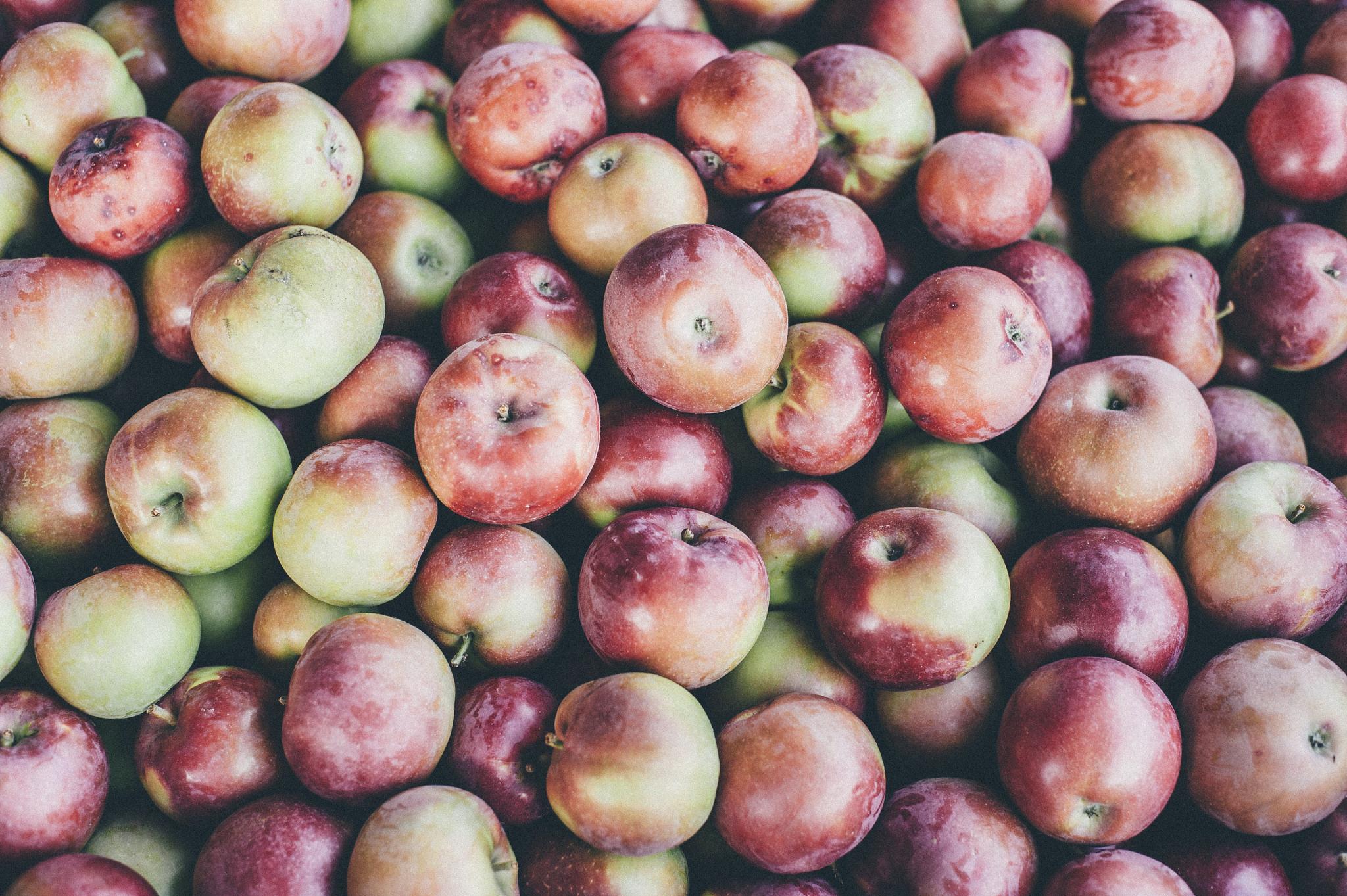 fingerlakes-new-york-apples