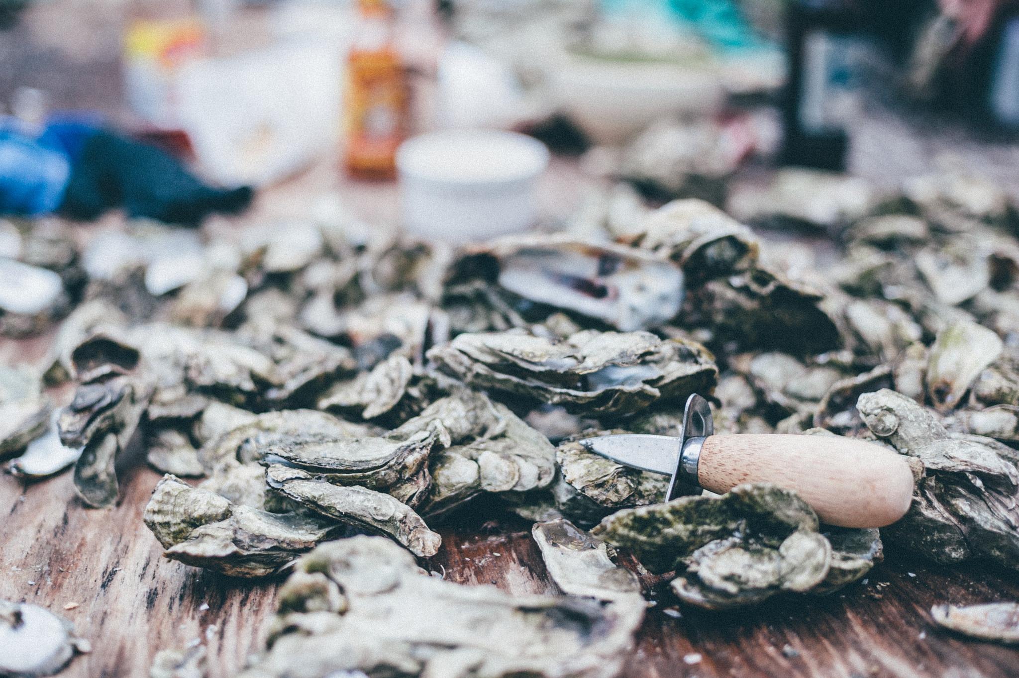 oysters charleston