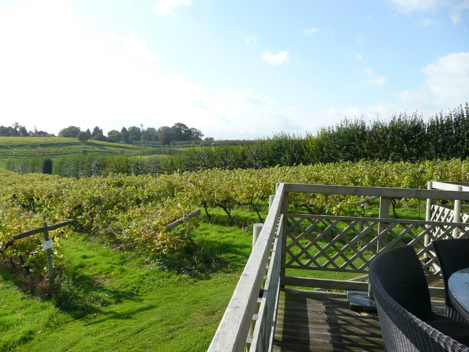 Three Choirs Vineyard