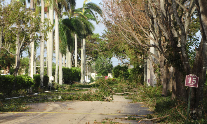miami-hurricane-irma-aftermath-closed-road.JPG