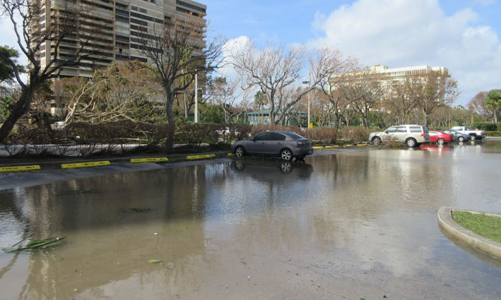 miami-hurricane-florida-flooded-parking.JPG