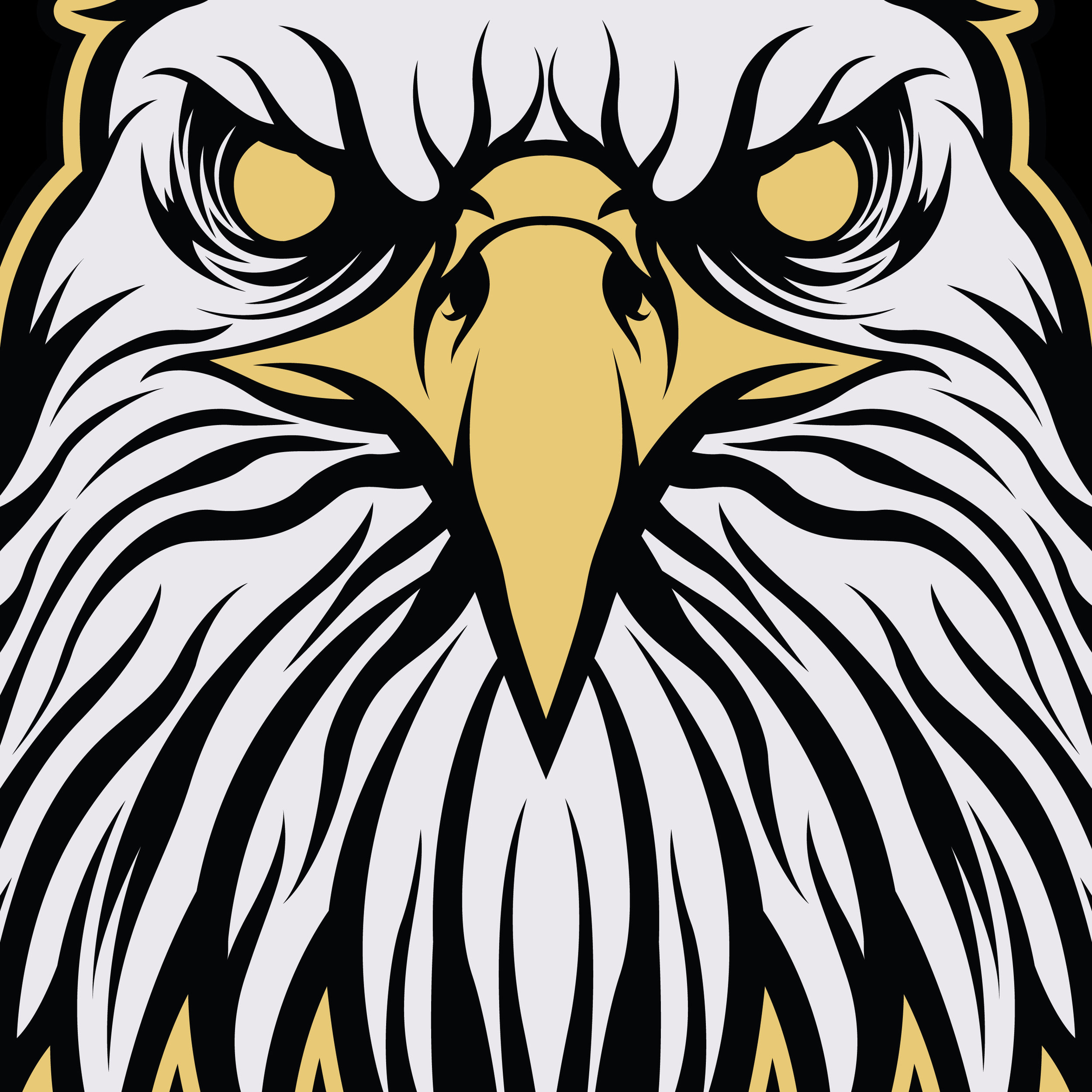 orozcodesign-keywaydesigns-eagle-illustration-close.jpg