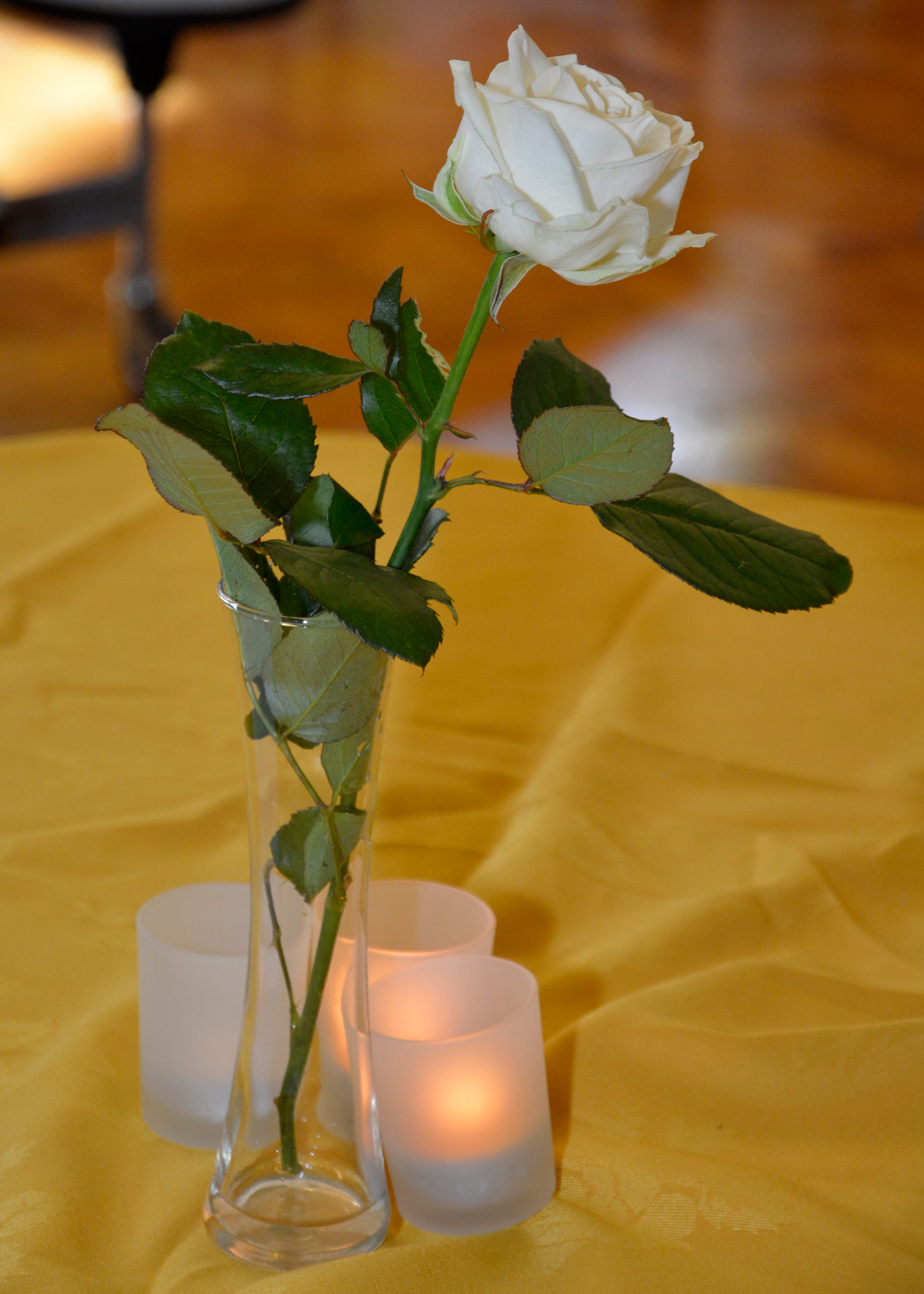 Photo: A White Rose at our 50th Anniversary Garden Party, October 2014
