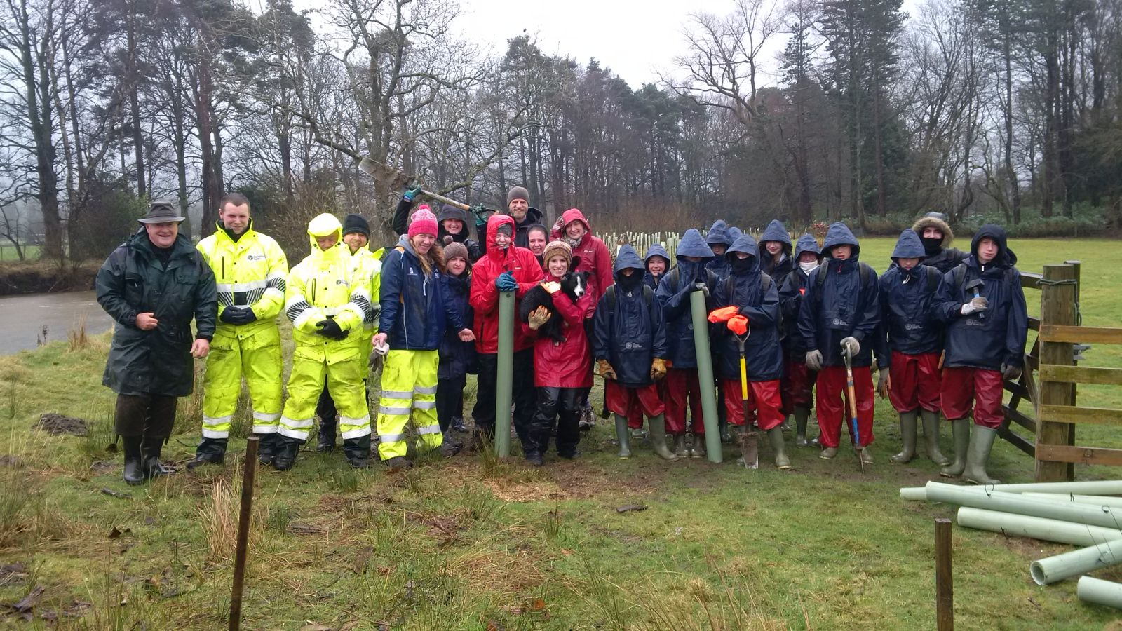 Photo: St. Mary's pupils help the Environmental Agency to plant trees on a windy day last week
