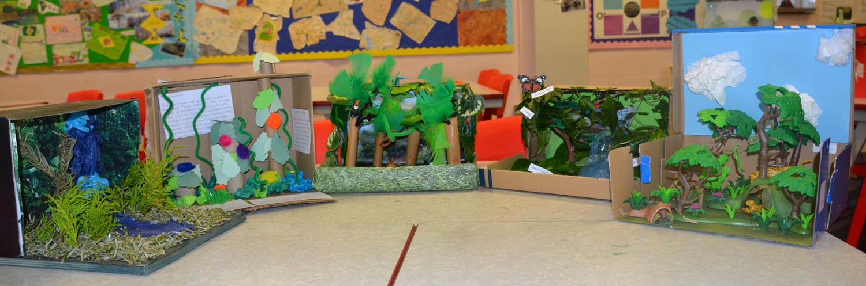 24 Rainforest in a Box-4.jpg