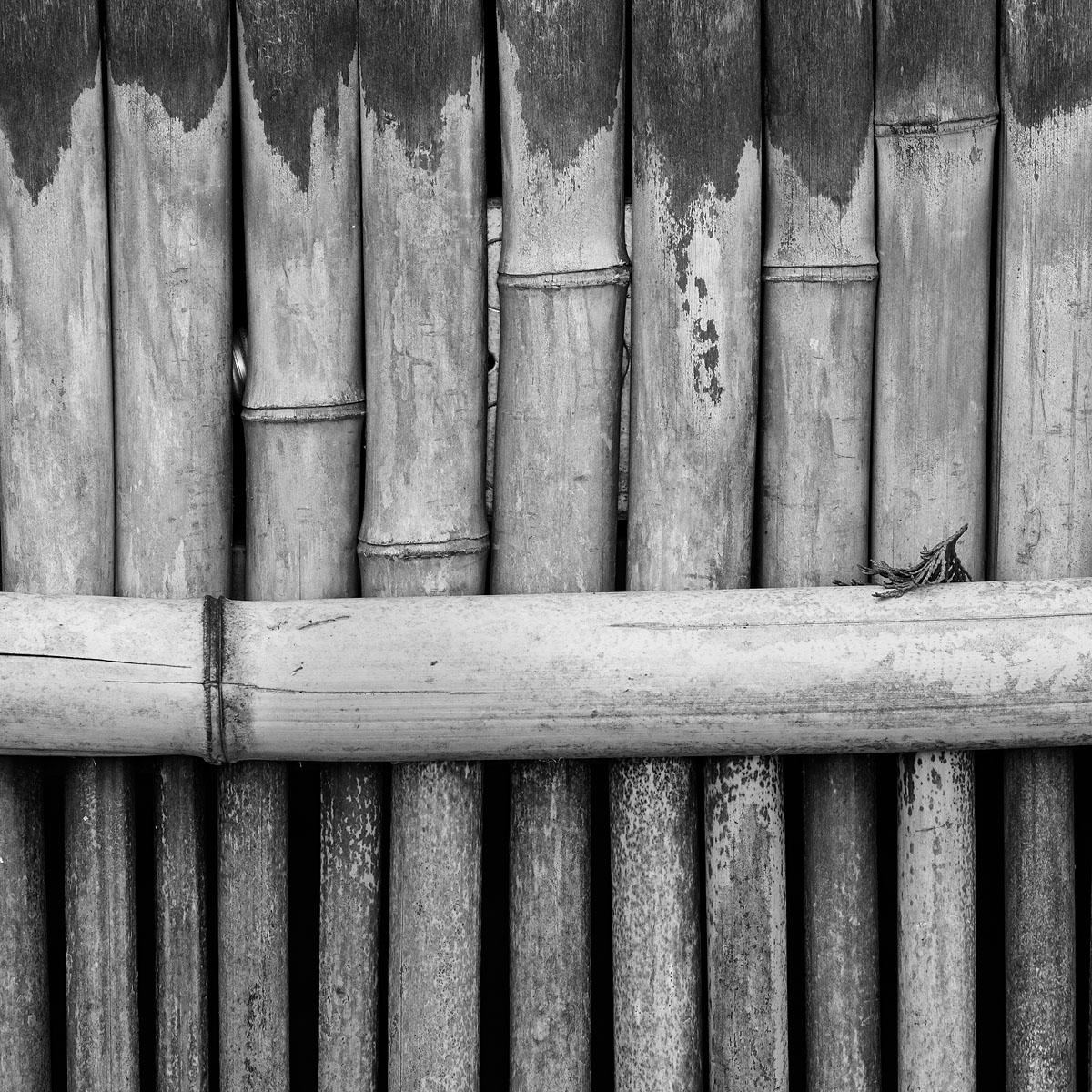 Fence Detail, Hakone Gardens