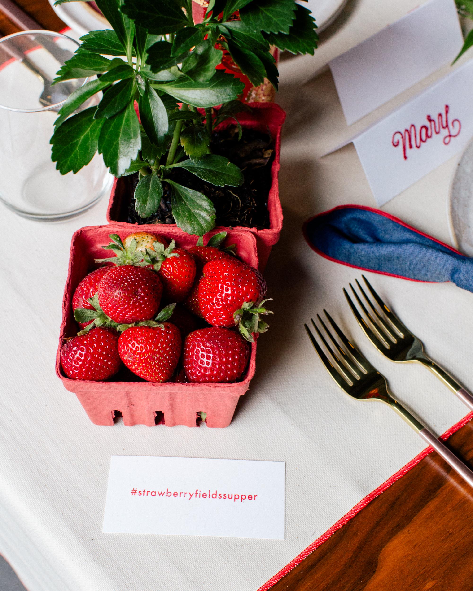 Filigree-Strawberry-071918-CMR-9579.jpg