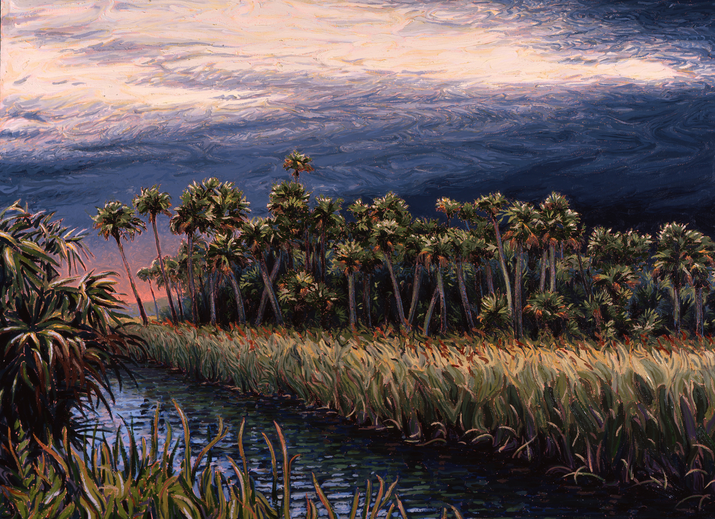 """Palm River Marshes  