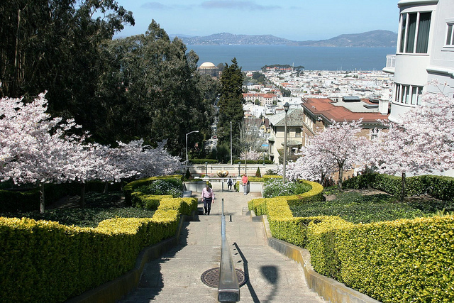 Pacific Heights***