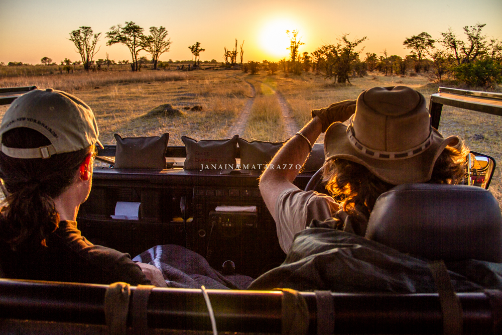 JMP_1485_safariadventure.jpg