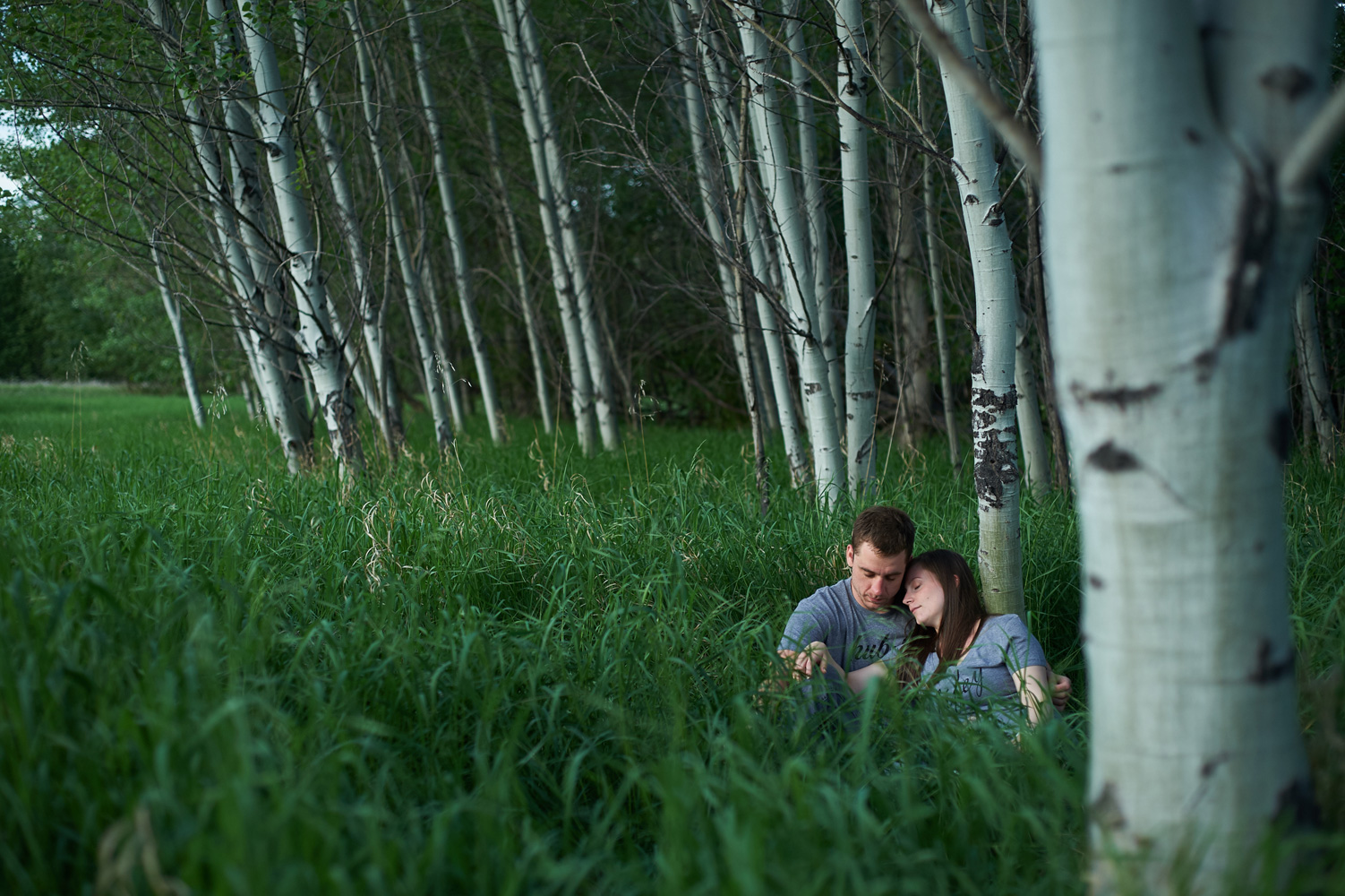 engaged-couple-sitting-in-long-grass-by-a-grove-of-birch-trees.jpg