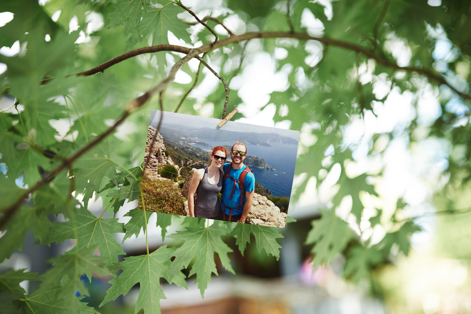 bride-and-groom-photos-pinned-in-a-tree.jpg