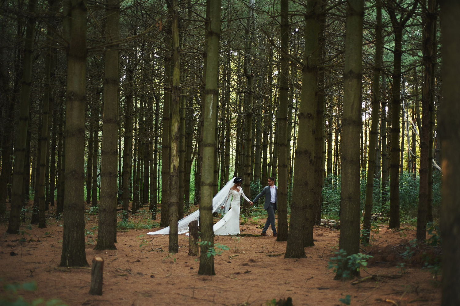 bride-and-groom-in-the-wilds-of-ontario-portrait.jpg