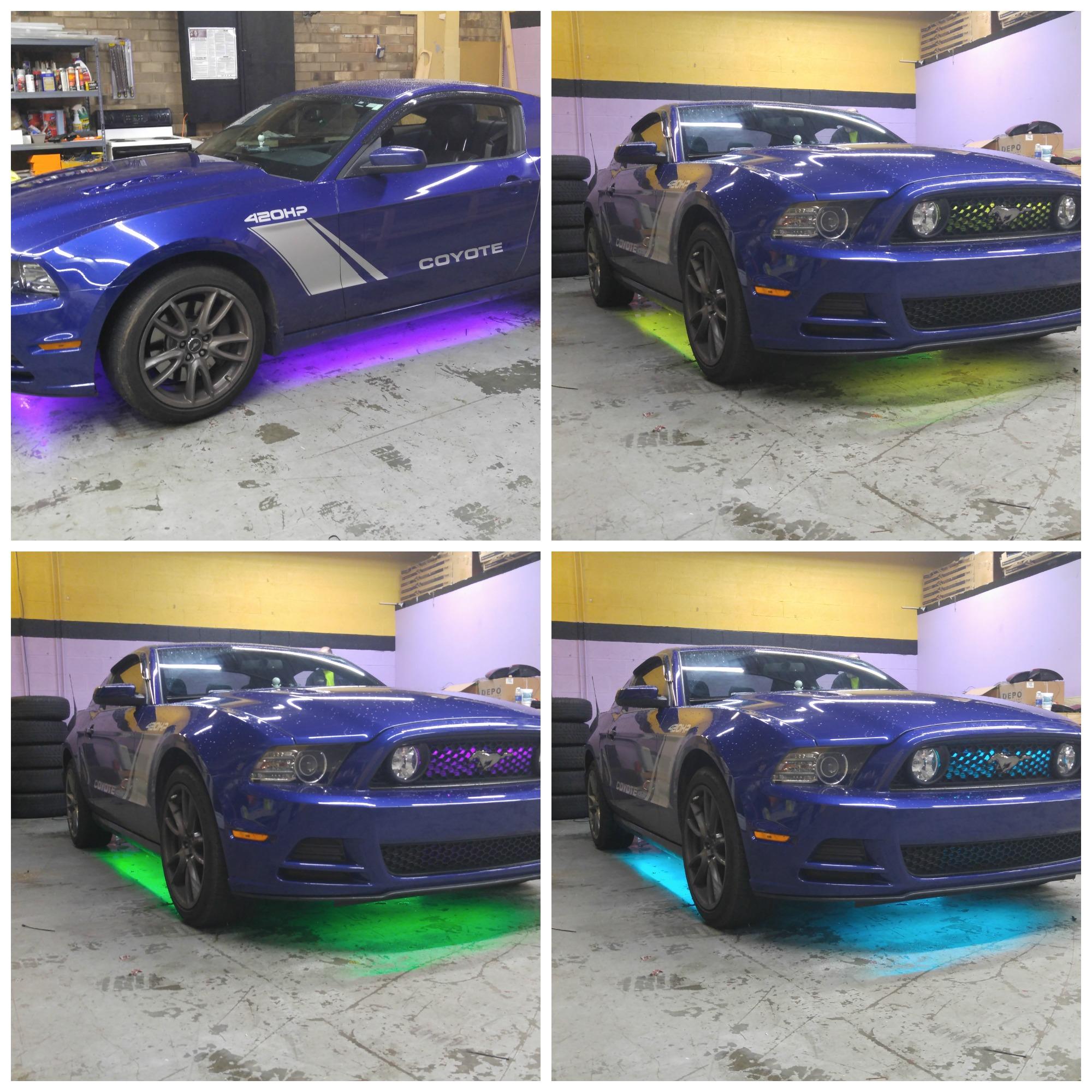 Mustang Collage.jpg