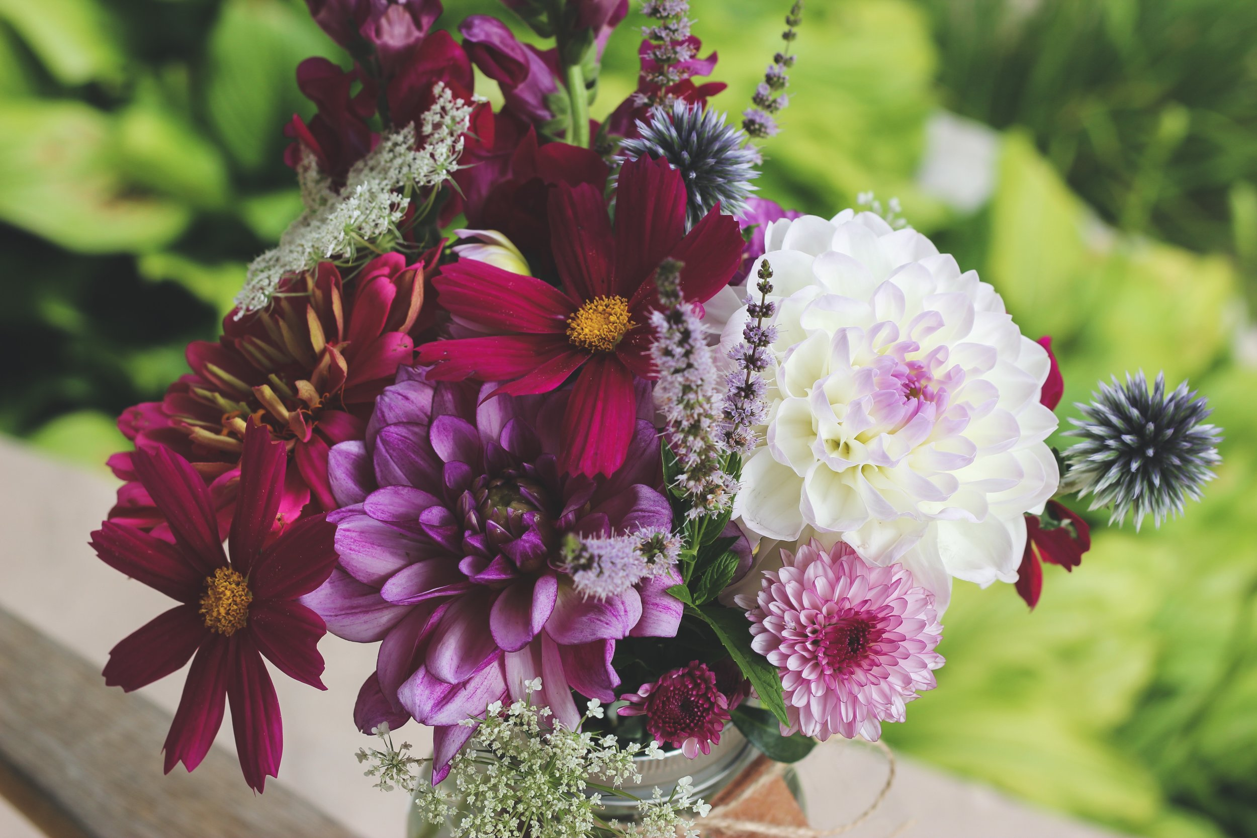 Purple pink and white dahlia zinnia and wild mint mason jar flower arrangement – Roots and Wildflowers