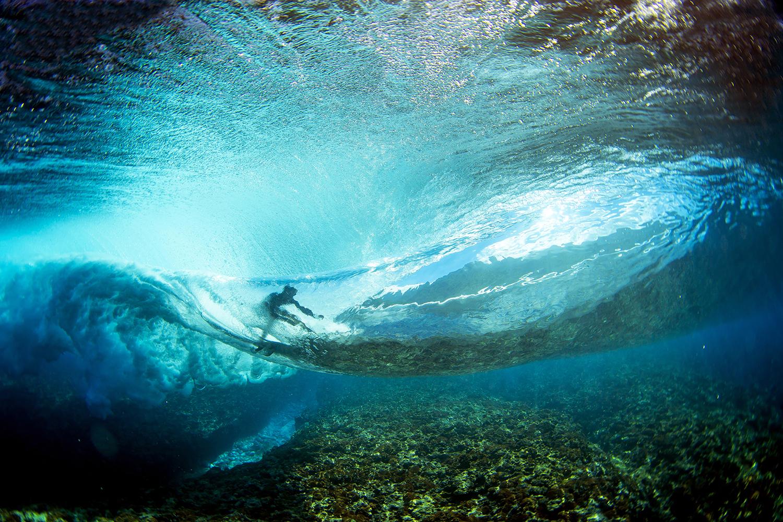 Underwater-8002-150818-Dom_Mosqueira copy.jpg