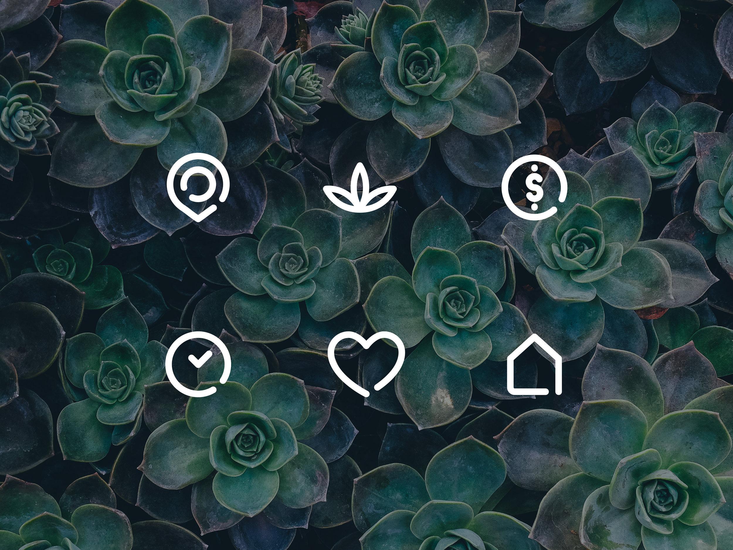 numi-icons-01.jpg