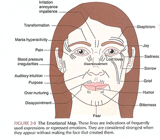 Photo Credit:        Face Reading in Chinese Medicine 2nd Edition       by  Lillian Pearl Bridges