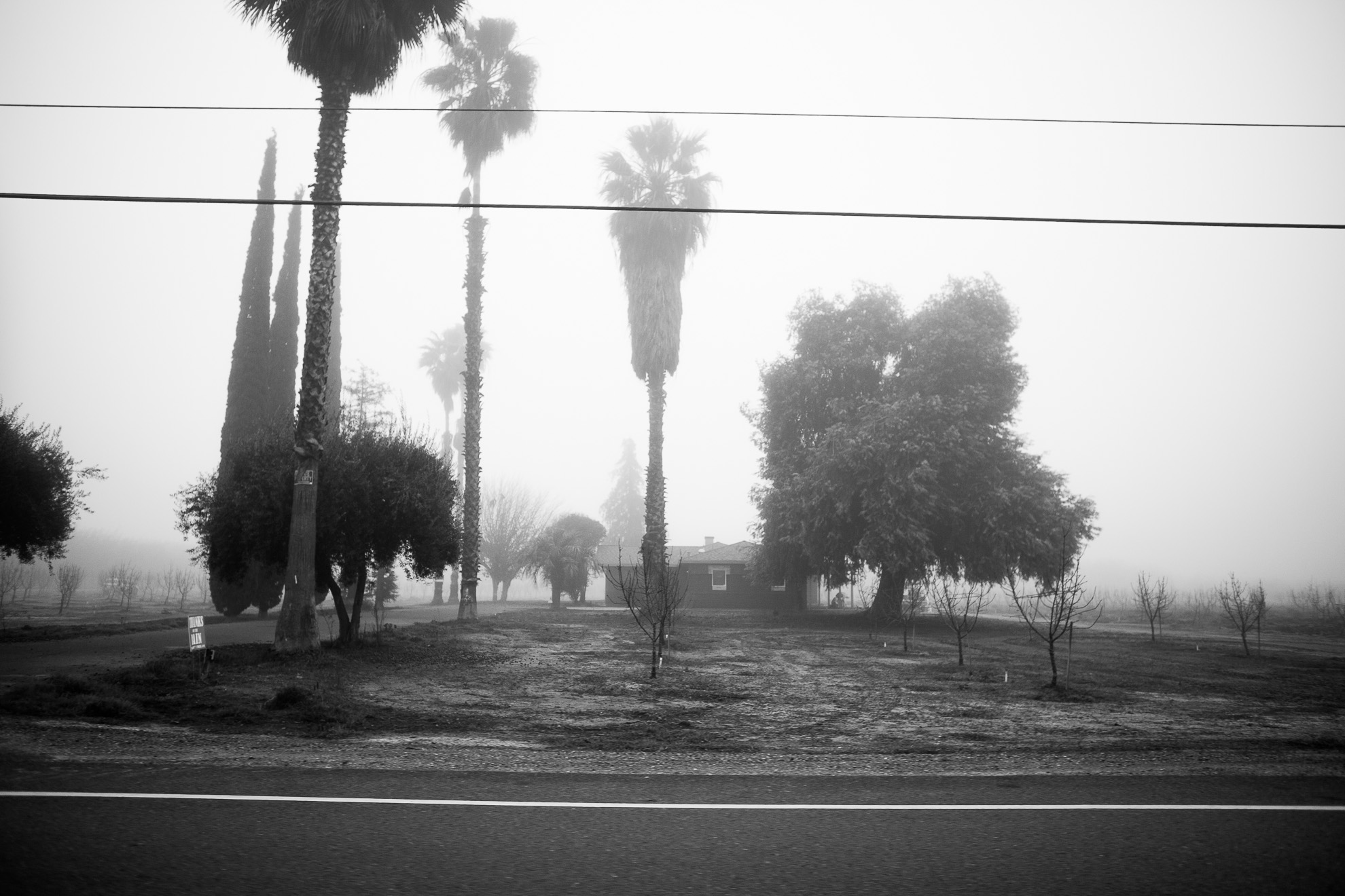 early morning fog at a farm house west of ripon california