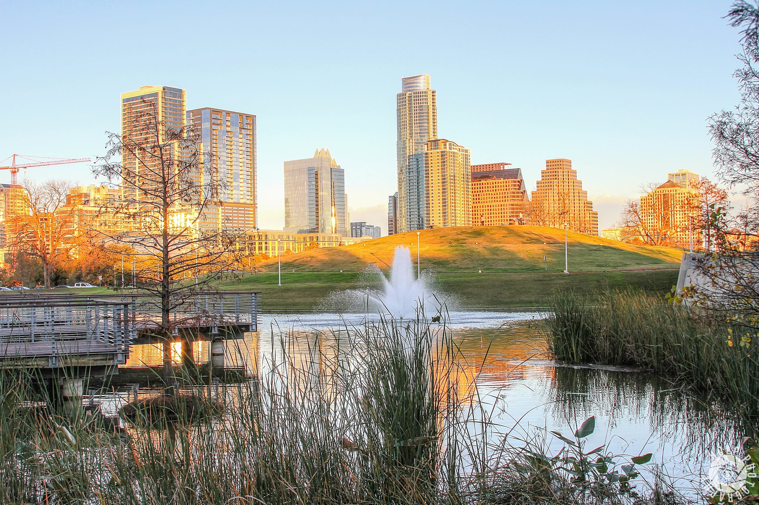 Beautiful sunset shot of the city over fountain and Doug Sahm Hill.