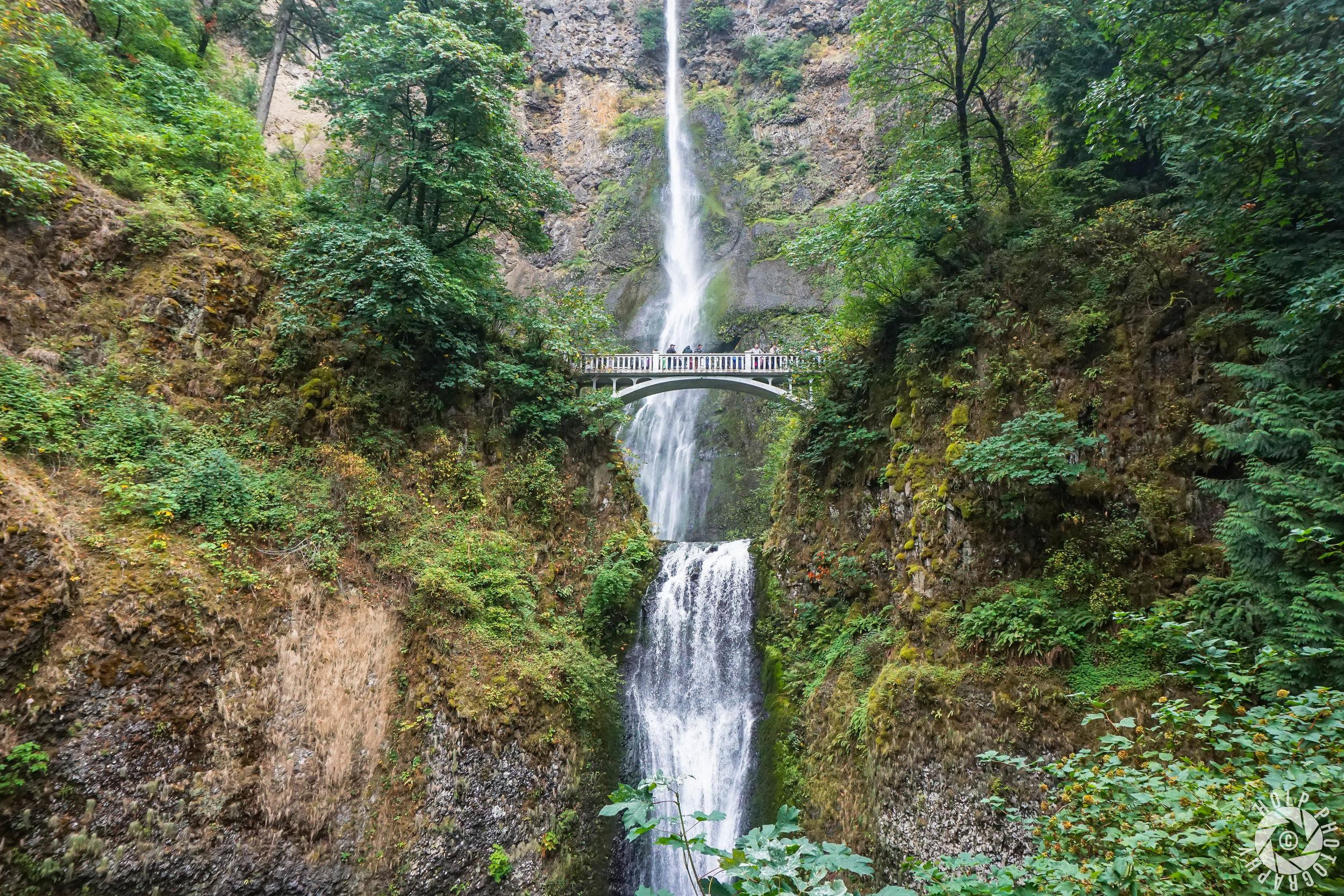 This photo was taken at Multnomah Falls outside Portland.