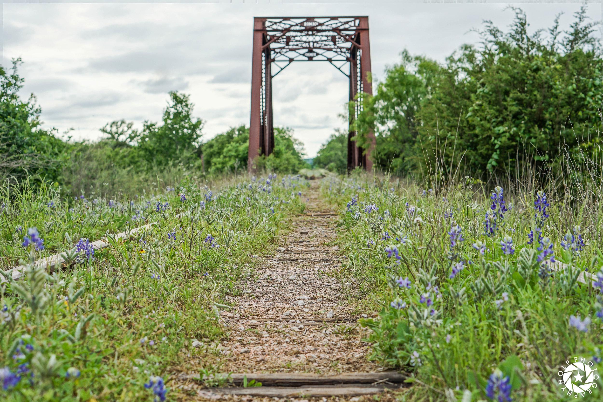 Bluebonnet Bridge in Kingsland, Texas