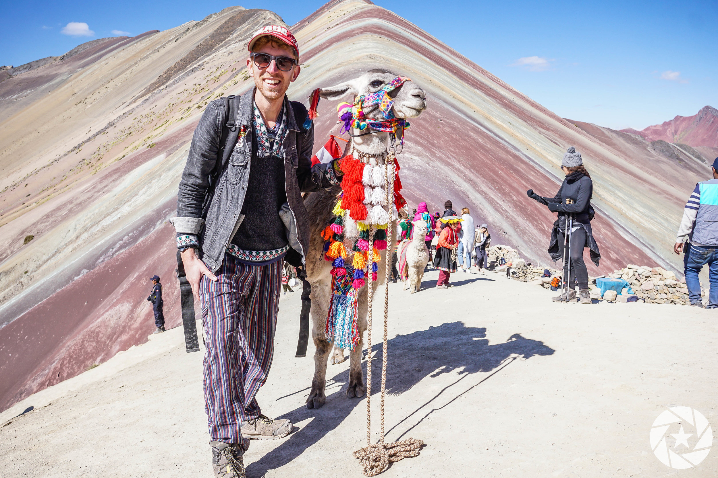 Chilling with a llama at the top of Rainbow Mountain near Cusco, Peru