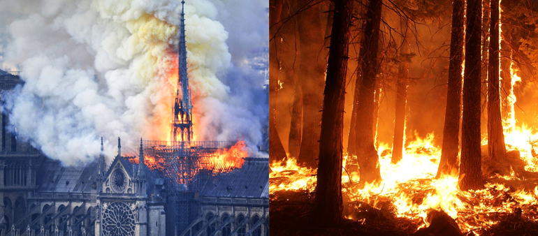 Fire at Notre Dame Cathedral (left) — Amazon Rainforest Fires (right)