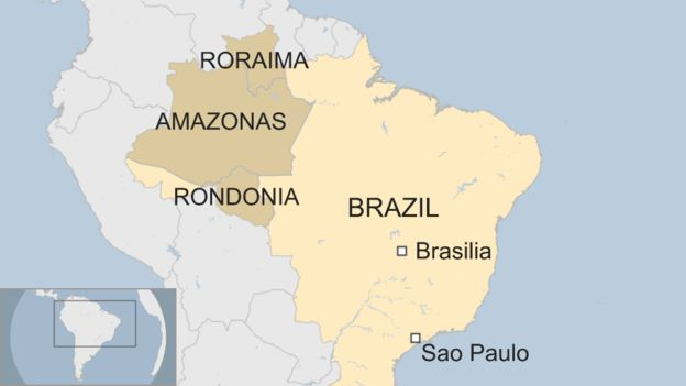 Brazilian States affected by wildfires in the Amazon Rainforest