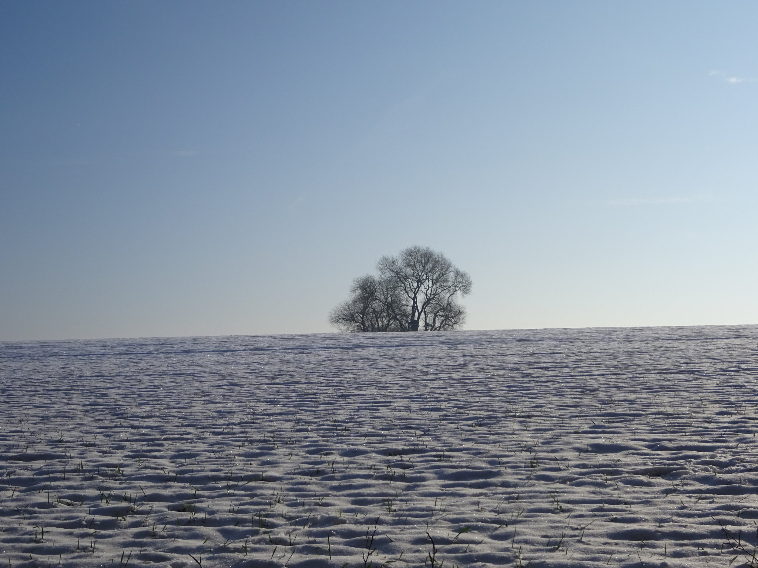 - Au cœur de chaque hiver palpite un printemps et derrière le voile de chaque nuit se trouve un matin radieux. (Khalil Gibran)