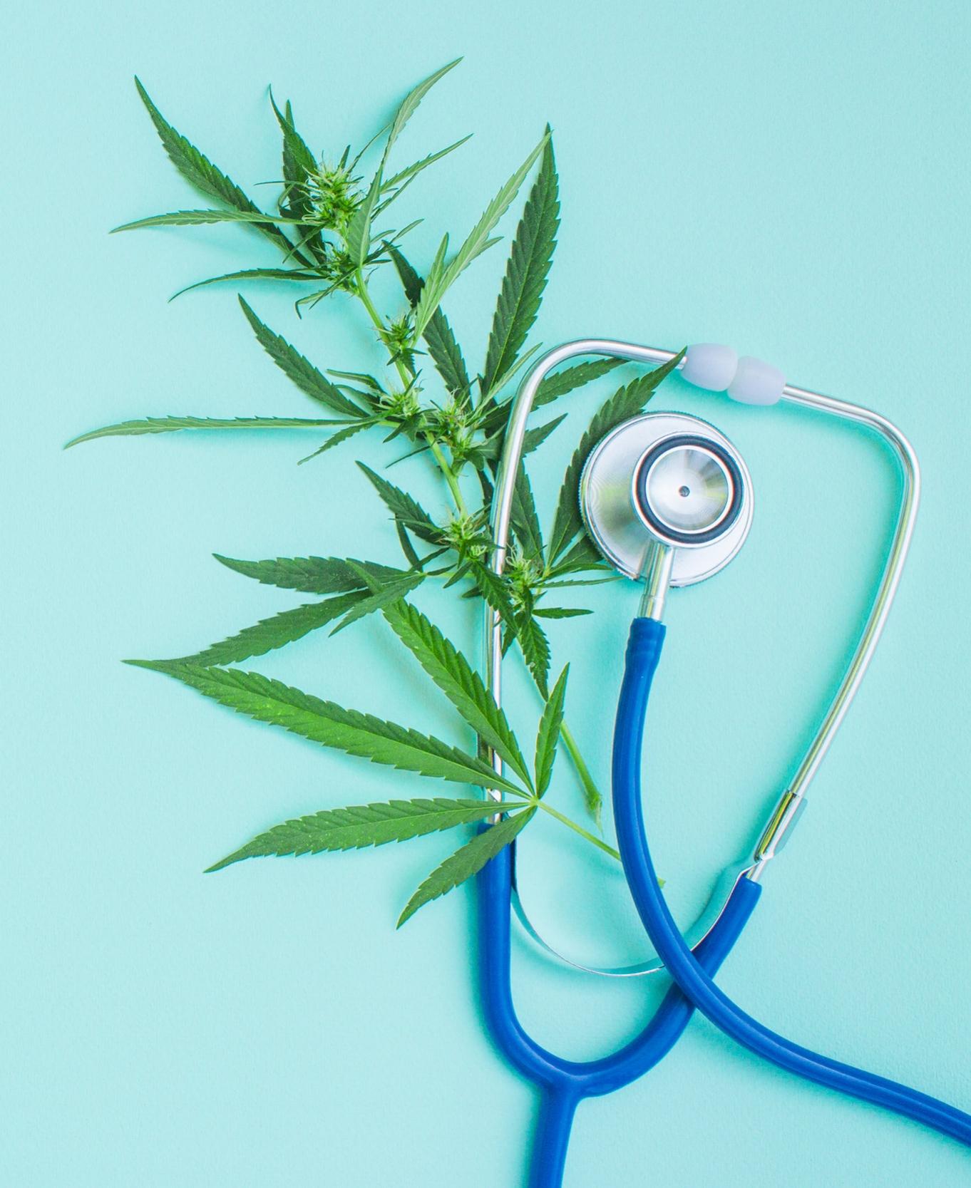 - Des études randomisées multicentriques sont, là encore, attendues, mais des réponses aux questions posées sur l'usage du cannabis commencent à recevoir des réponses grâce à l'investissement de certains centres.