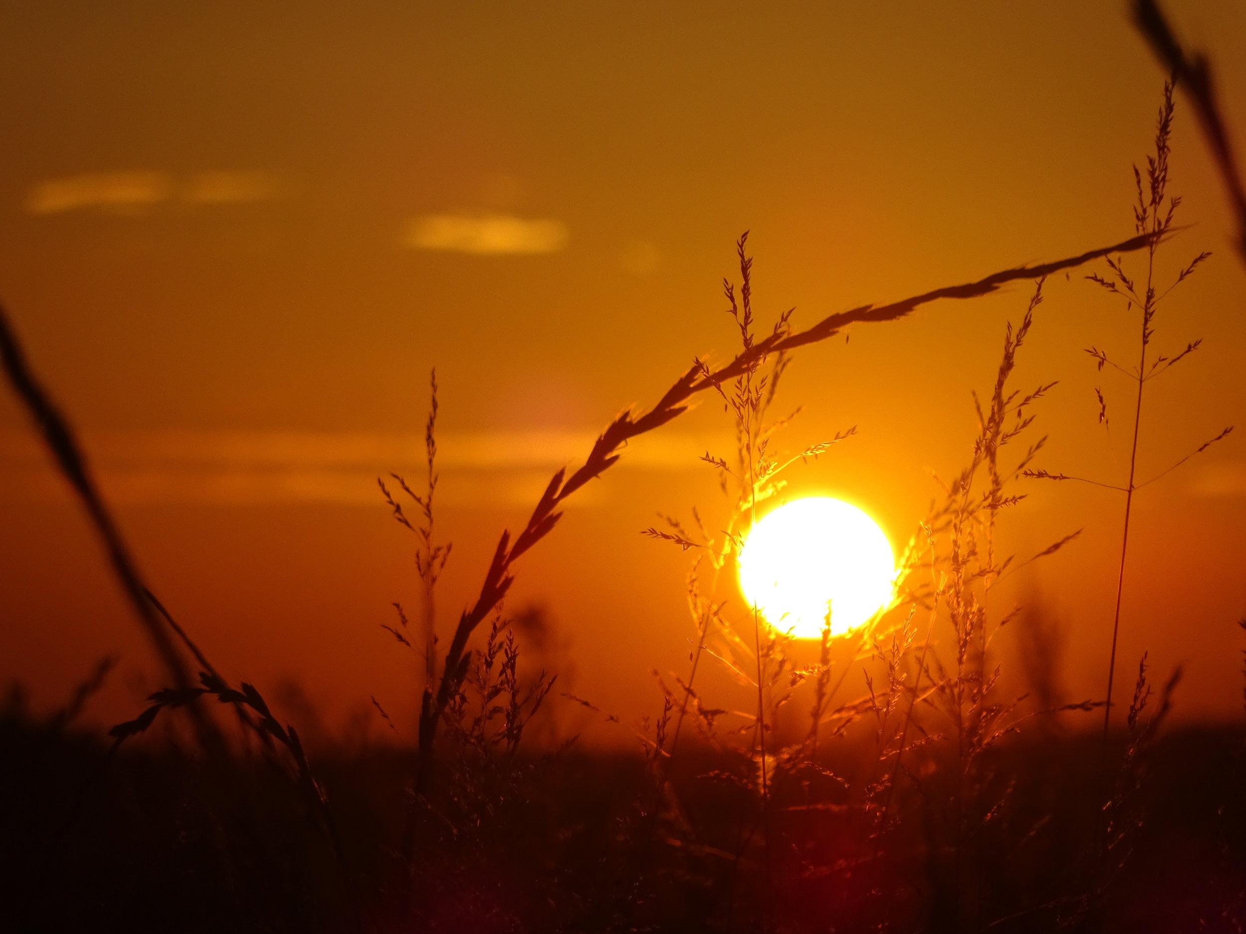 - Personne ne peut fuir son cœur, c'est pourquoi il vaut mieux écouter ce qu'il dit.( Paulo Coelho )