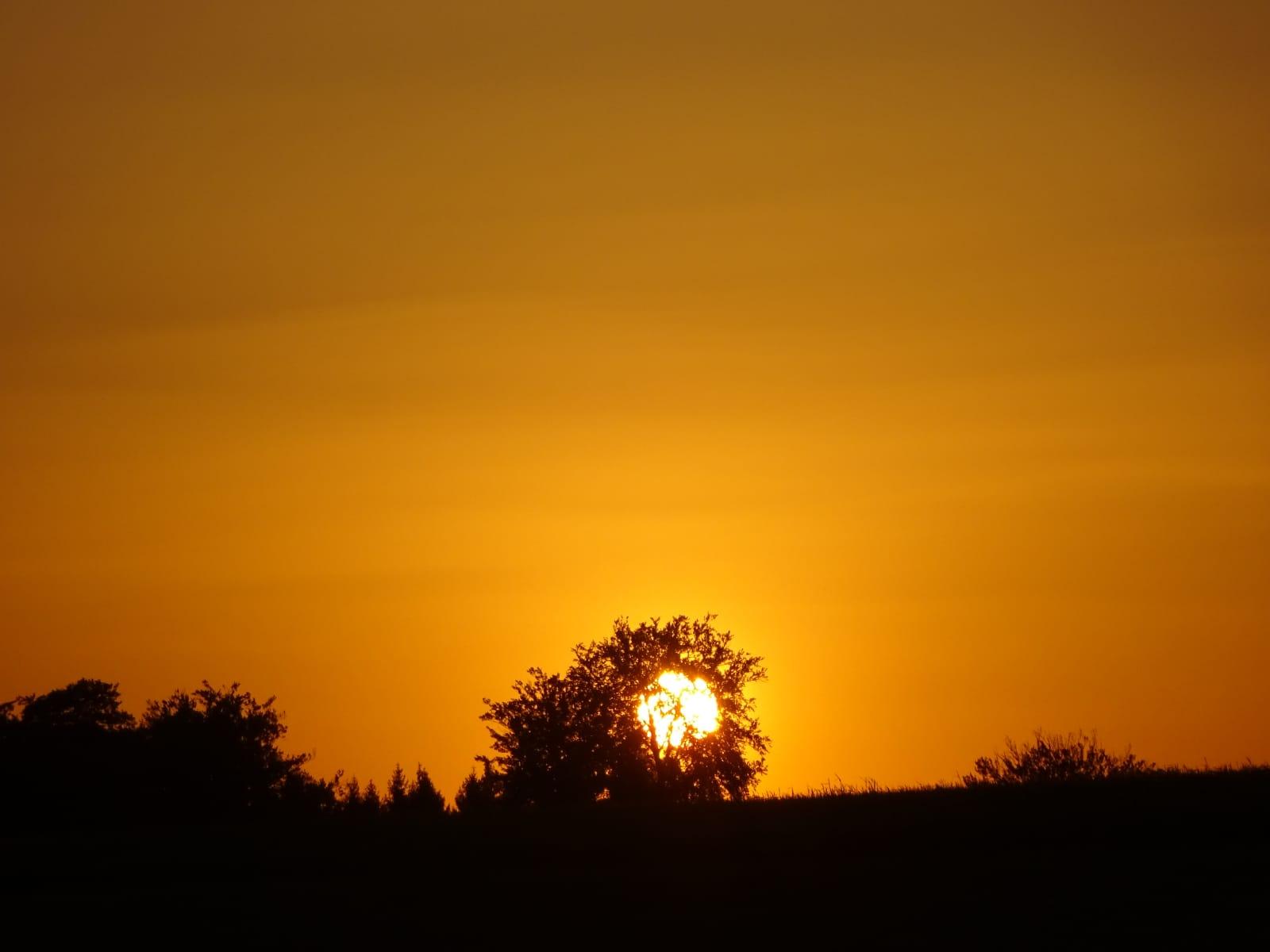 - Si vos yeux sont aveuglés par vos soucis vous ne pouvez pas voir la beauté d'un coucher de soleil. (Krishnamurti)