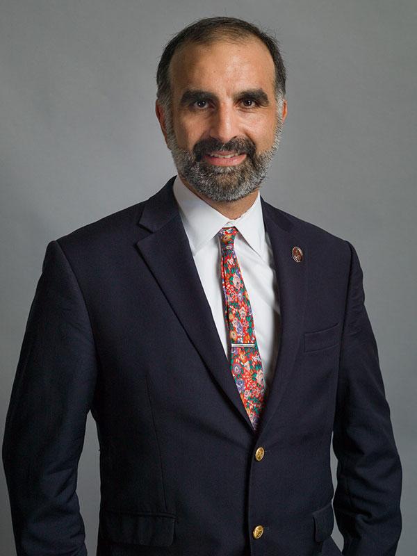 Piruz Partow, Executive Director