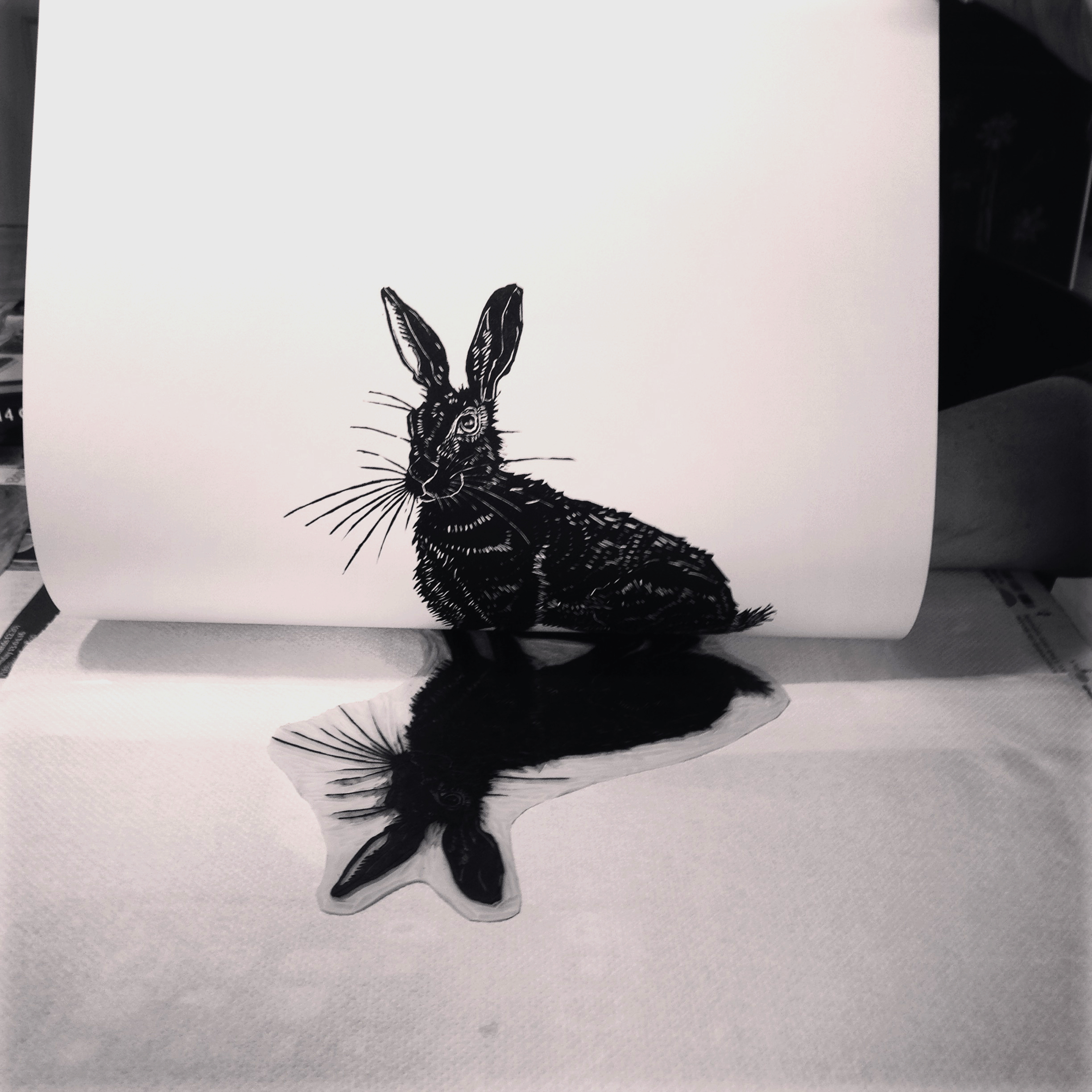 Hare out of the press by Lindsay McDonagh