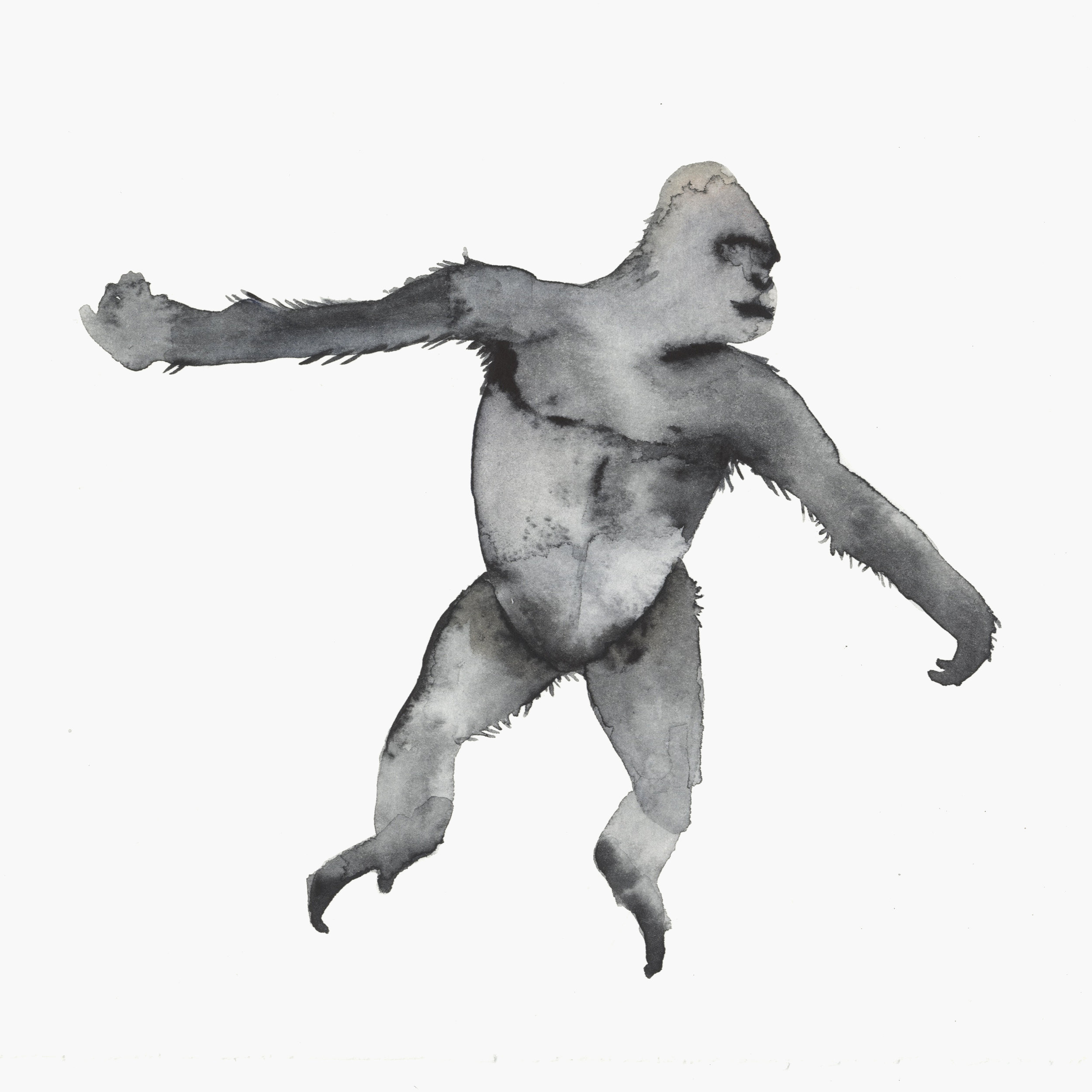 Gorilla moves by Lindsay McDonagh