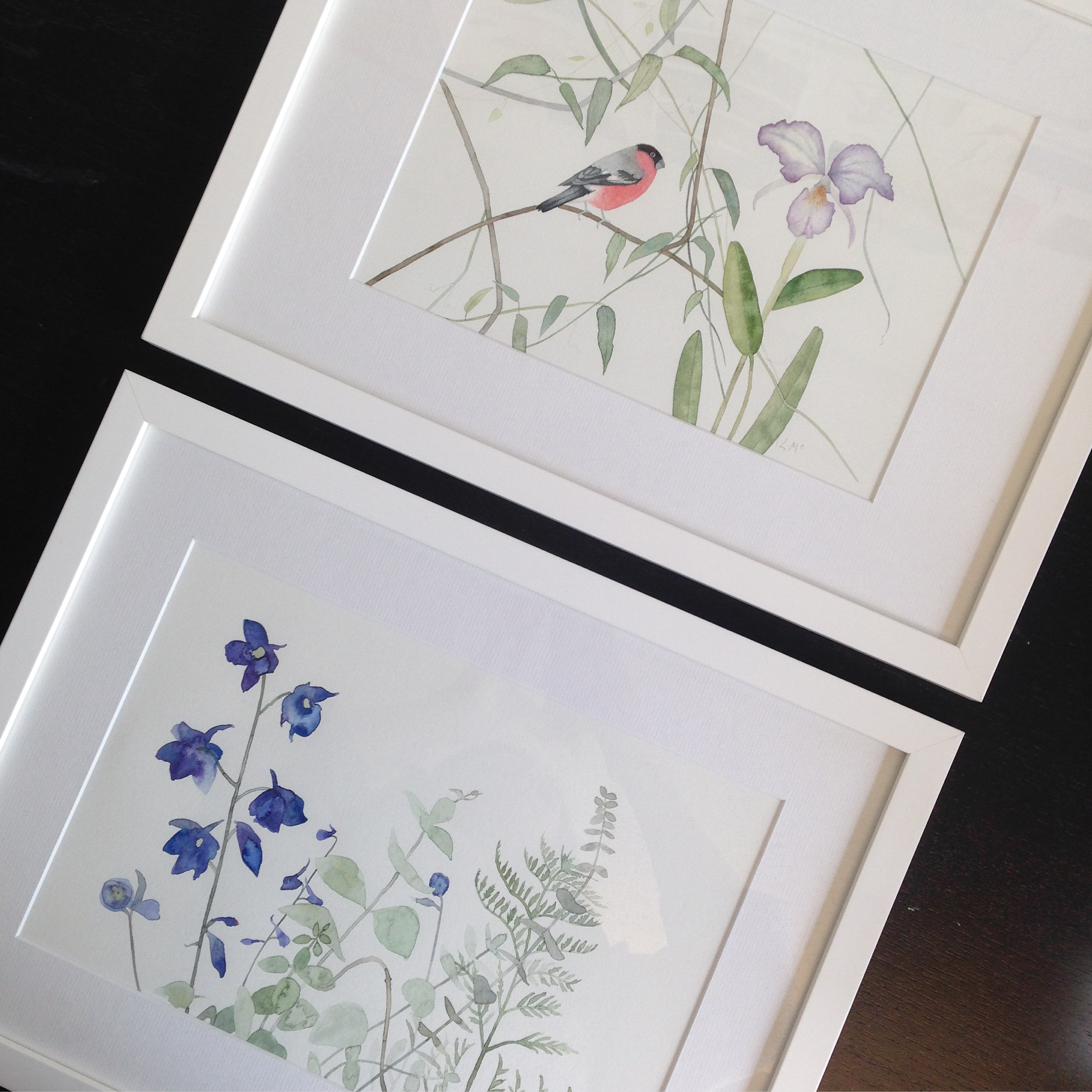 Botanical framed work by Lindsay McDonagh