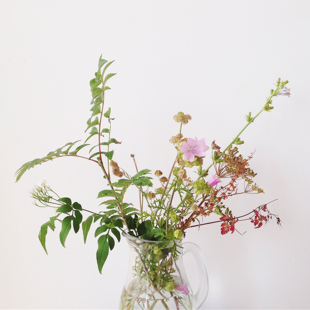 Meadow flowers still life photo by Lindsay McDonagh