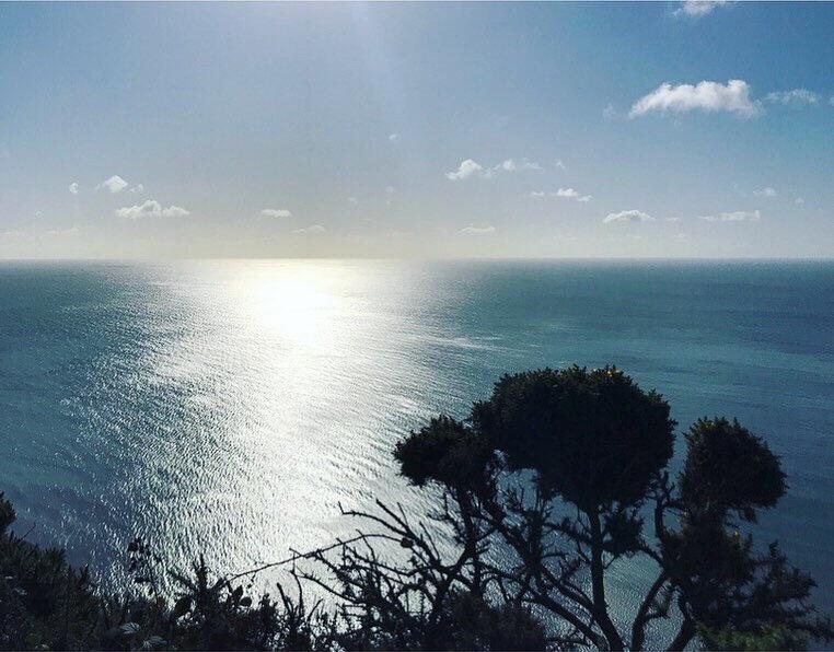 coast by Lindsay McDonagh