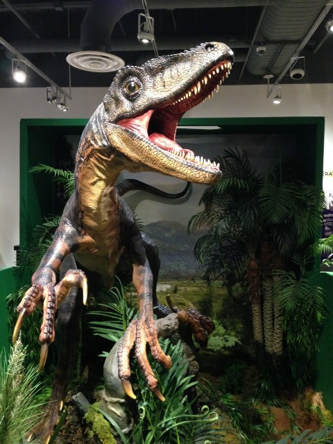 Tyrannosaurus Rex at the Flint Hills Discovery Center