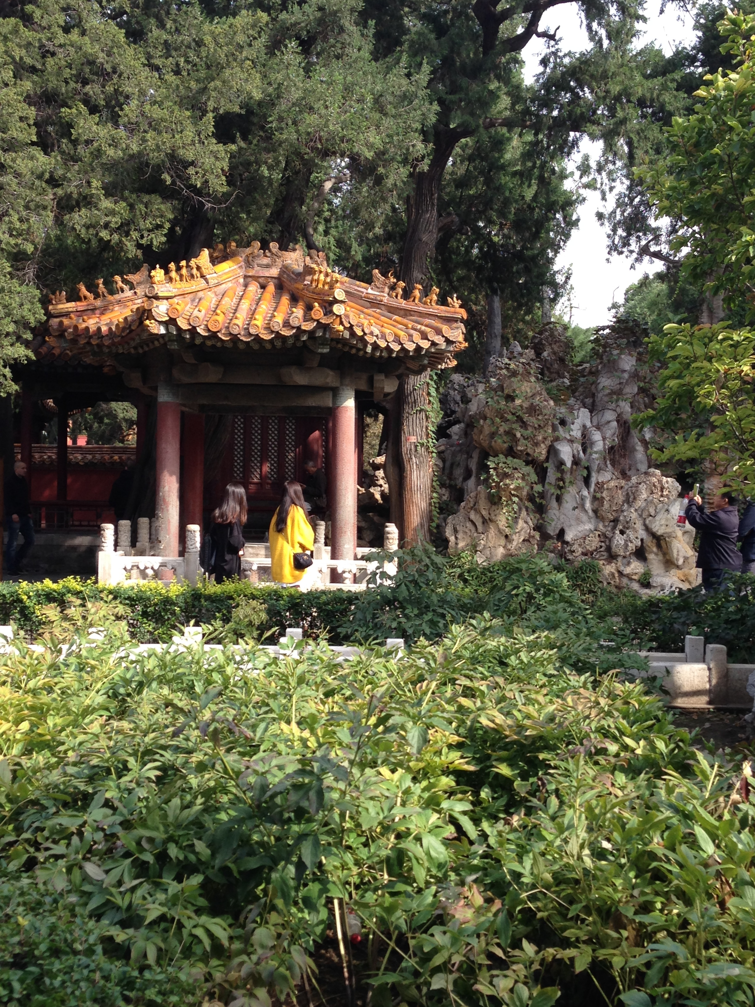 The gardens of the Forbidden City were lovely (and slightly less crowded).