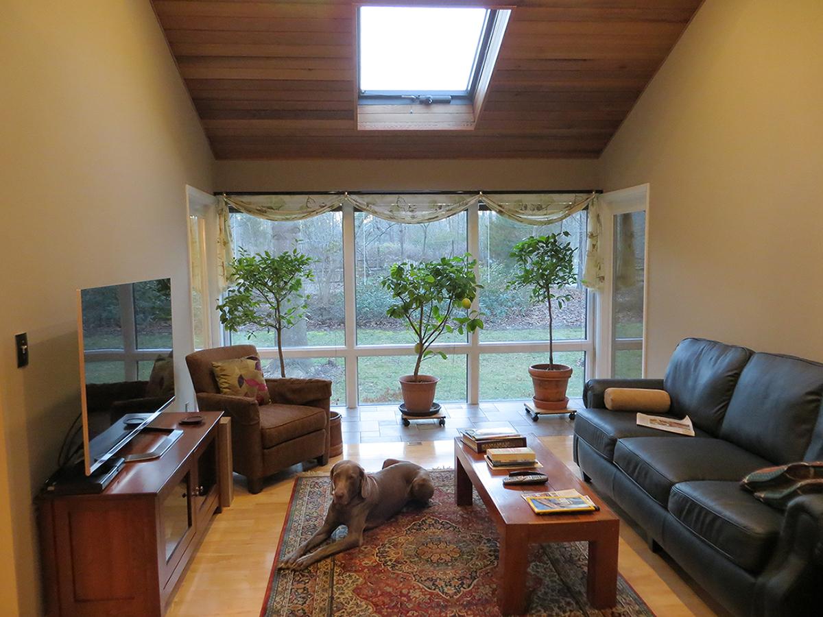 Living room with widow wall