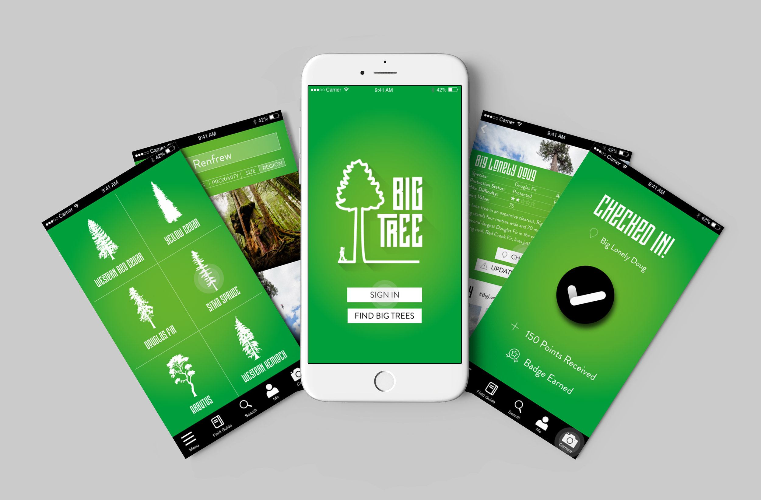 Robazzo provided a full design package for the Big Tree App, from logo, typeface and colour scheme to user interface and wireframes.