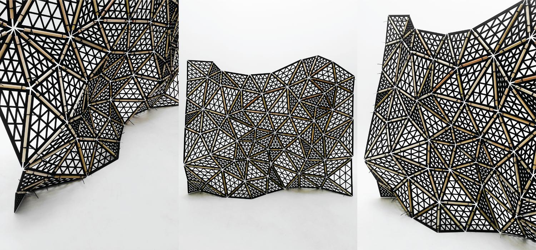 parametric tessellated wall