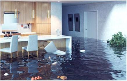 water damage emergency service