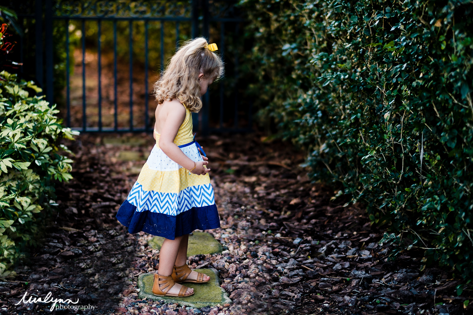 children and family photographer