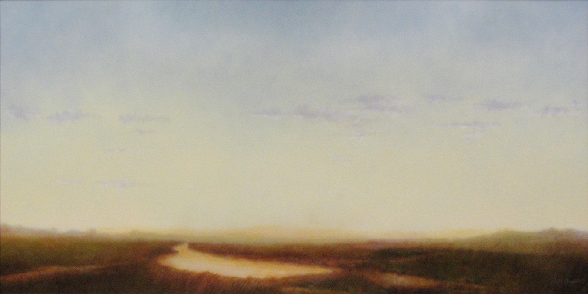 """Marshlands V. Oil on linen, 24"""" x 48"""""""