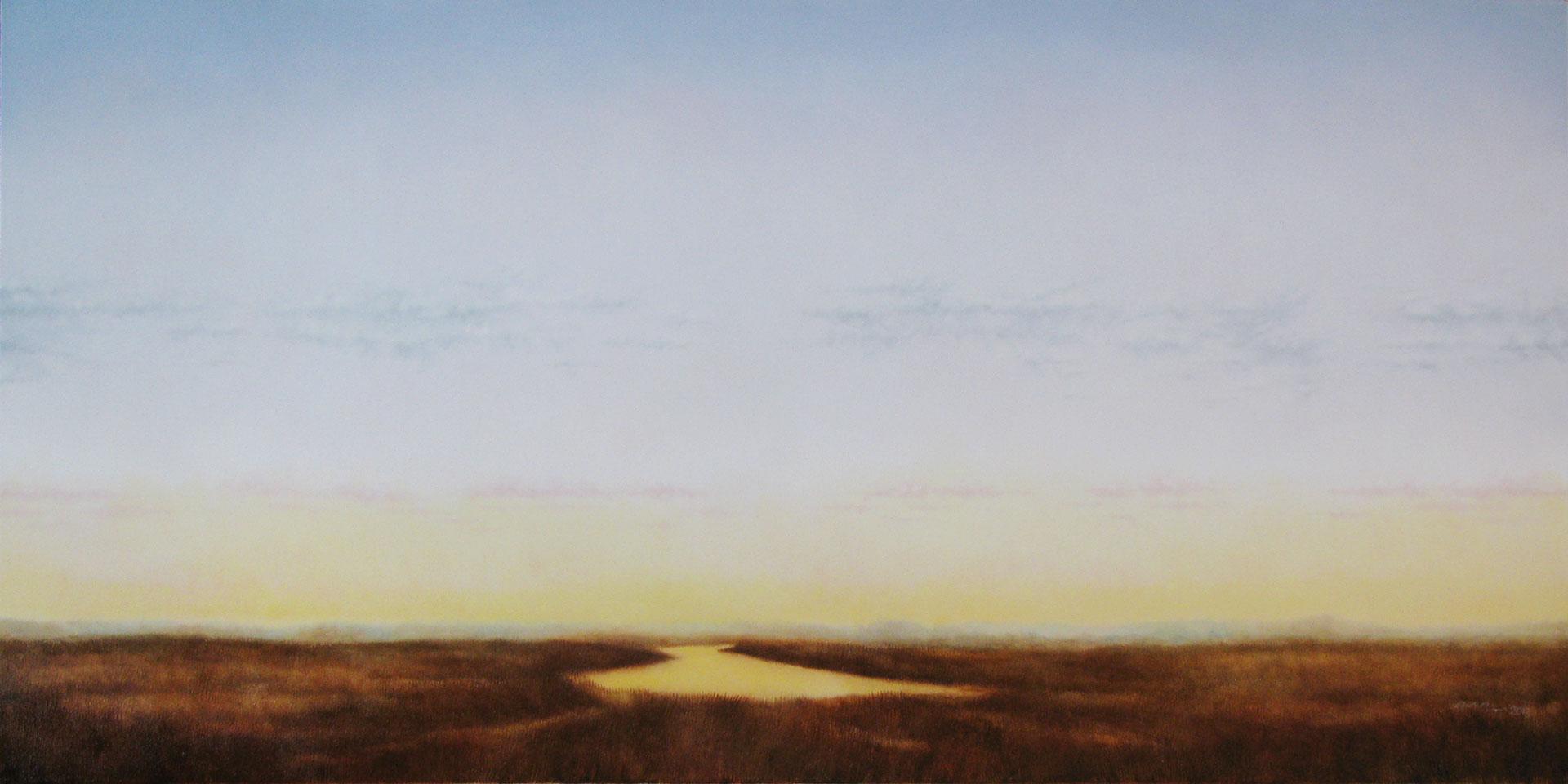 """Marshlands IV. Oil on linen, 24"""" x 48"""""""
