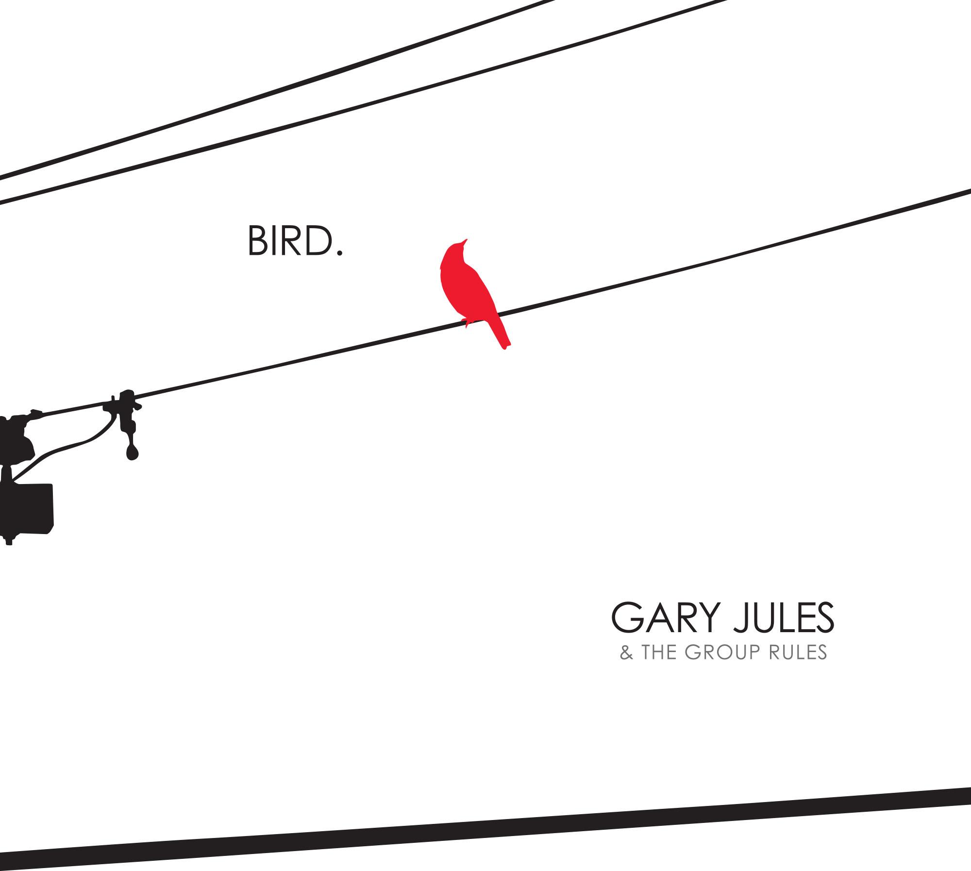 bird cover.jpg