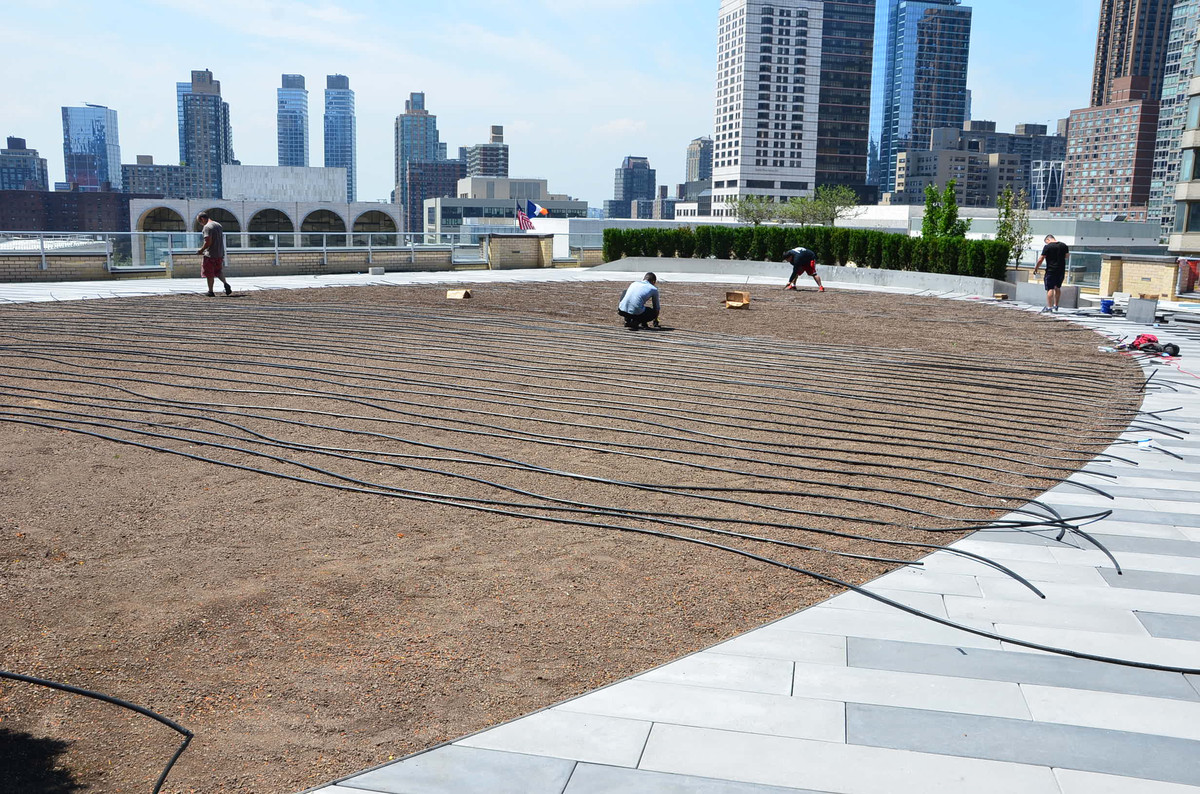 Installing Drip Irrigation for the Roof Lawn